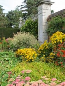 abundant flower garden