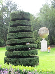 topiary tree at Cliveden