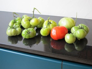 single red tomato with green siblings
