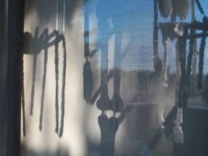 Halloween shadows