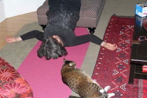 doing yoga with the cat