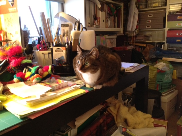 cat on work table