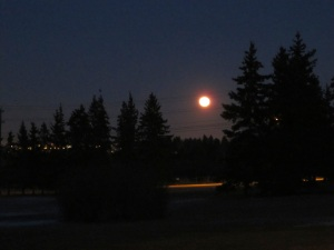 lovely full moon