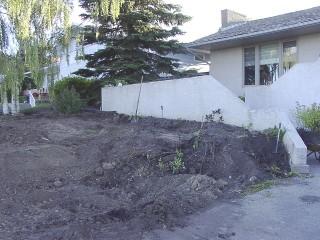 start of landscaping