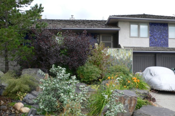 yard-2006