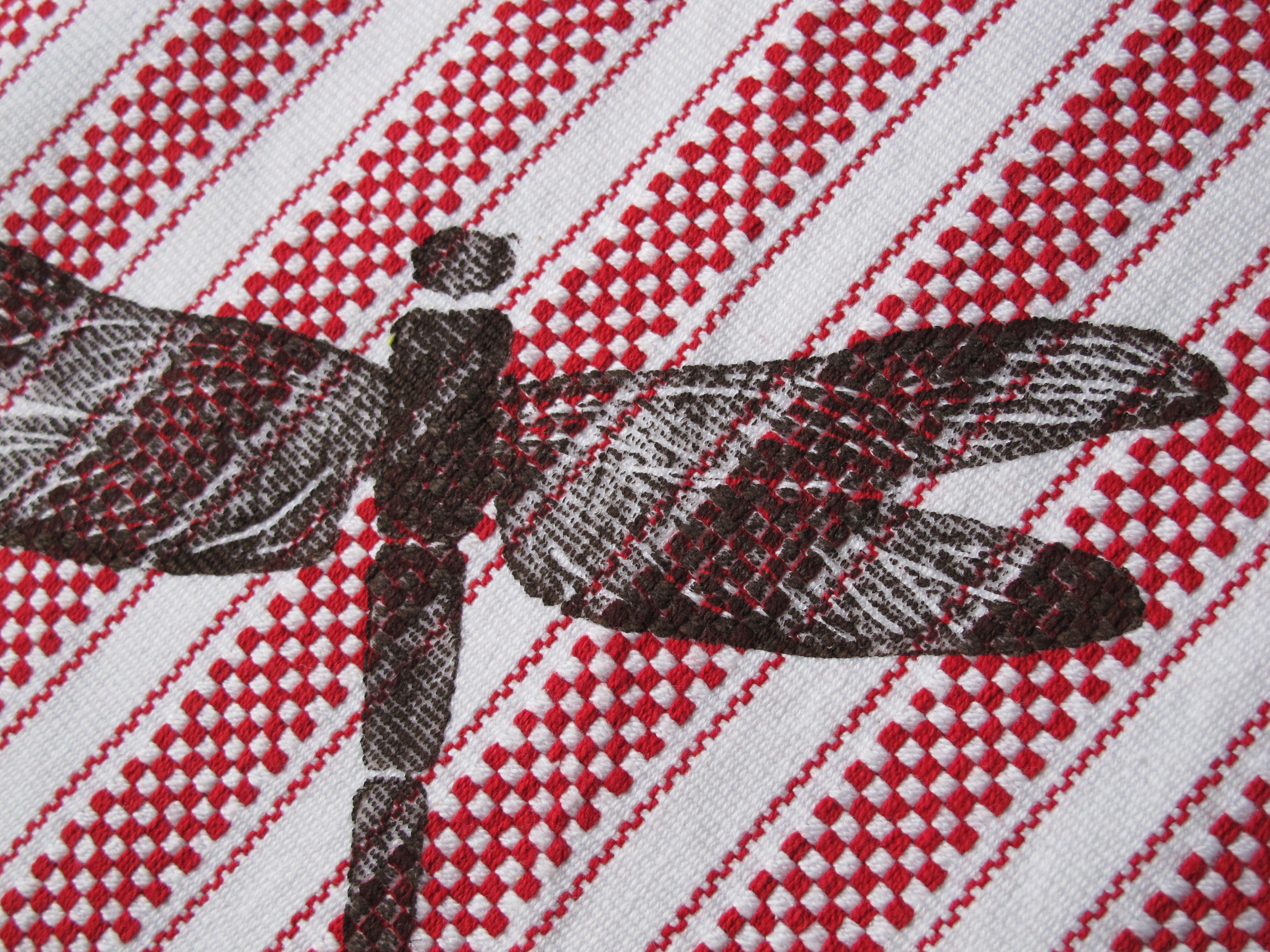 dragonfly detail