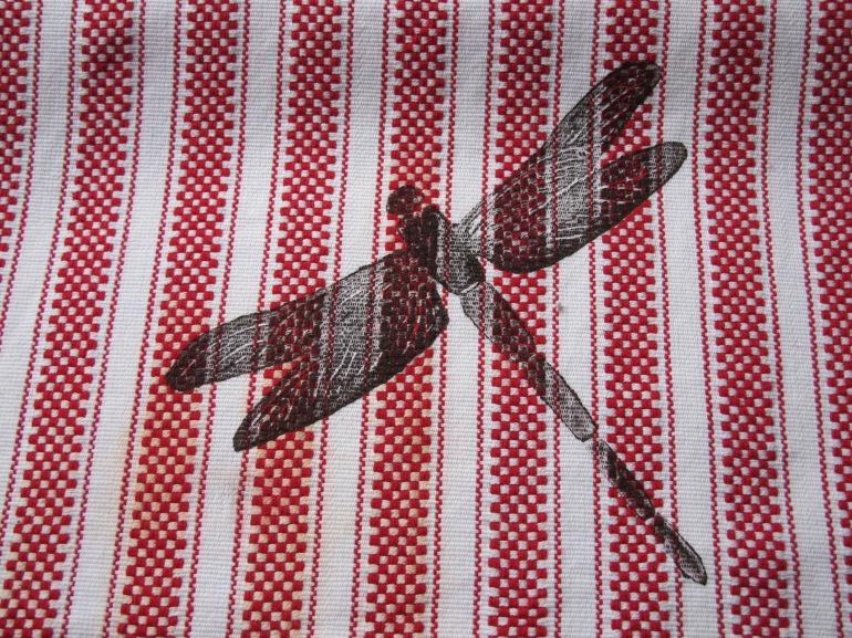 dragon fly image