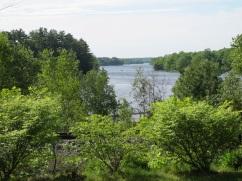 lake in muskoka