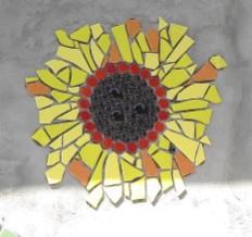 sort of sunflower