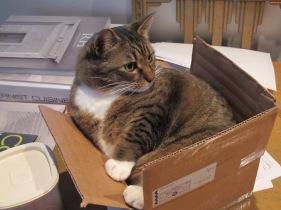 Kush in a box