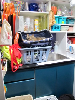 Kush in the laundry