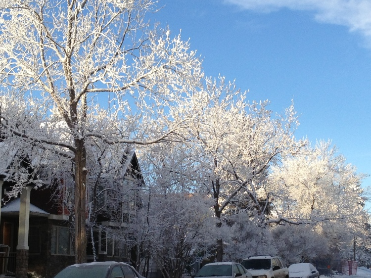 snowy street view