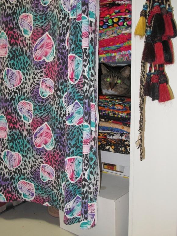 cat in fabric stash