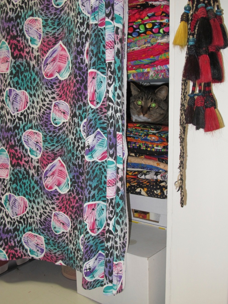 cat in fabric stash