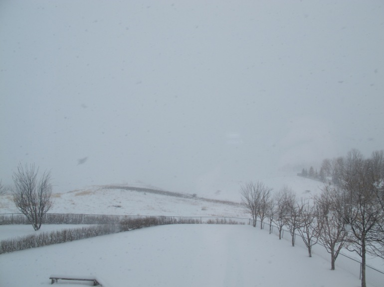 snowy coulee view