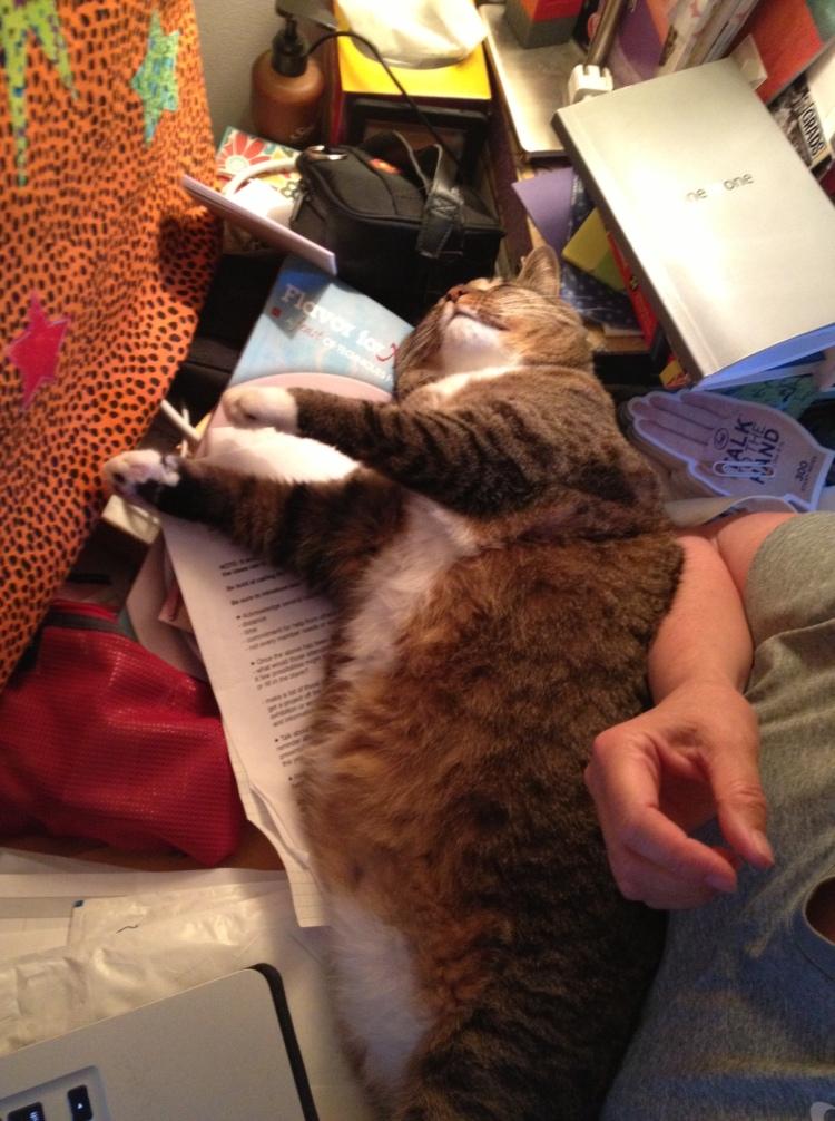 almost comfy