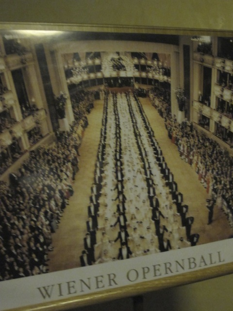 opera ball photo, Vienna Opera House
