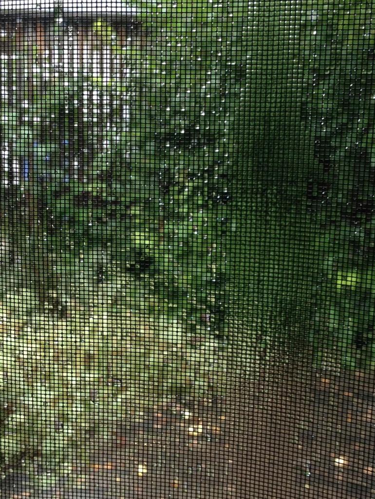 wet bug screen