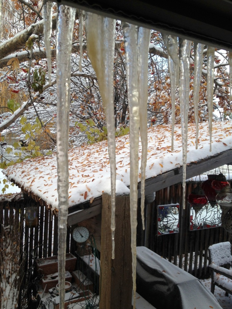 icicles, snow, fallen leaves and greenery