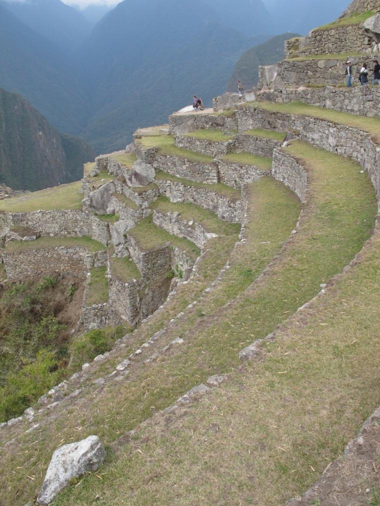 terraced steps