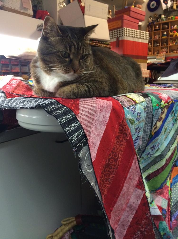 Kush on the ironing board